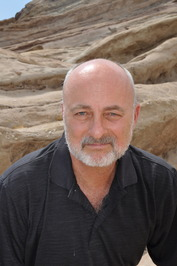 David Brin