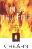 Into the Fire: The Story of How One Church Welcomed Breakthrough and a Visitation of the Holy Spirit