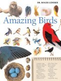 Amazing Birds by Roger Lederer