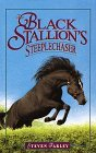 The Black Stallion's Steeplechaser (Black Stallion Retuns, #2)