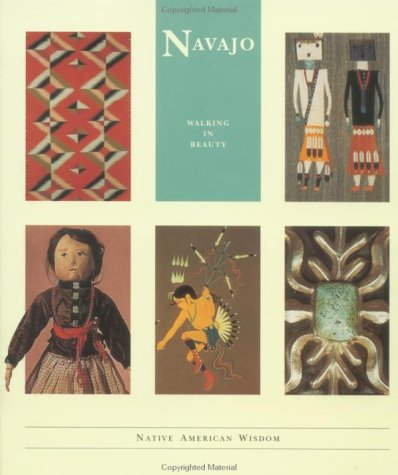 Navajo by Terry P. Wilson
