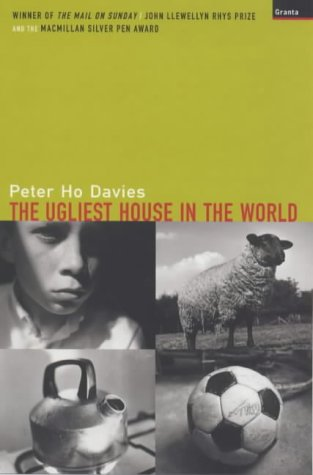 The Ugliest House in the World by Peter Ho Davies