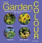 Garden Color: Choosing Stunning Color Combinations for Your Garden