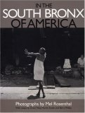 In the South Bronx of America by Mel Rosenthal