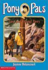 Lost and Found Pony (Pony Pals, #29)