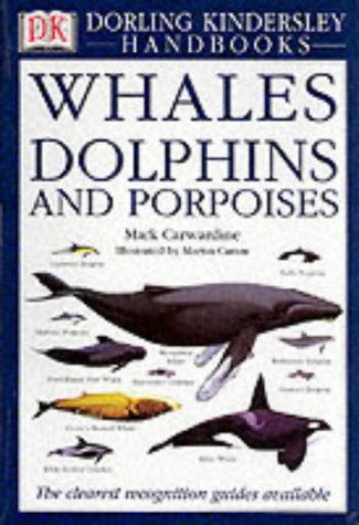 Essay on Dolphins in the Navy
