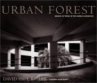 Urban Forest by David Bayles