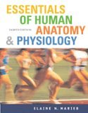 Essentials of Human Anatomy and Physiology- Text Only