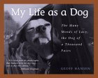 My Life As A Dog In Vermont: The Many Moods Of Lucy, The Dog Of A Thousand Faces
