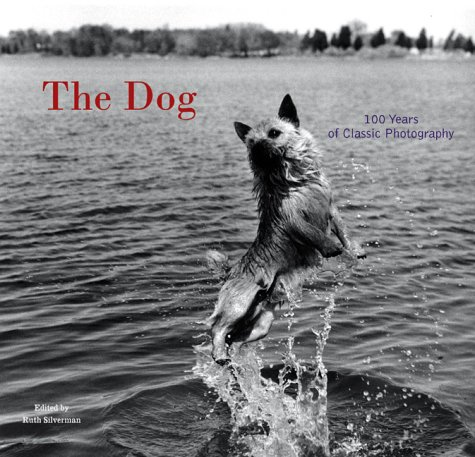 Free online download The Dog: 100 Years of Classic Photography PDF