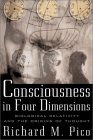 Consciousness in Four Dimensions by Richard M. Pico