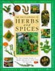 Encyclopedia Of Herbs & Spices