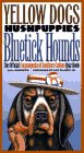 Yellow Dogs, Hushpuppies, and Bluetick Hounds by Lisa Howorth