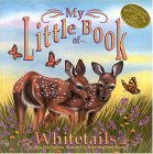 My Little Book Of Whitetails (My Little Book Series)