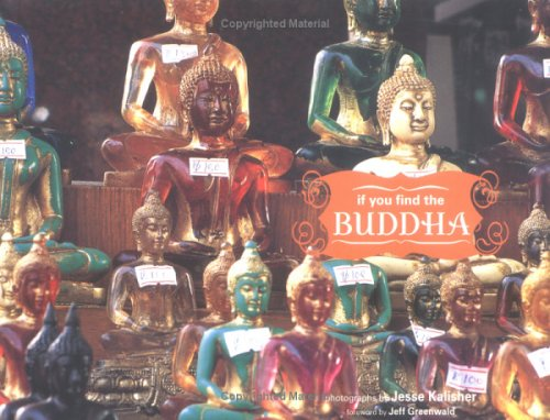 If You Find the Buddha by Jesse Kalisher
