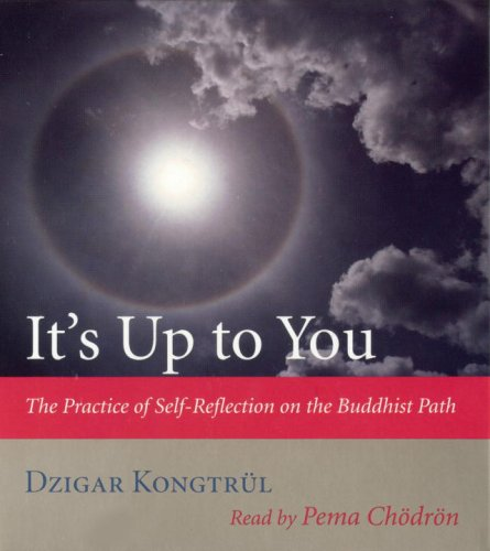 It's Up to You by Dzigar Kongtrül III
