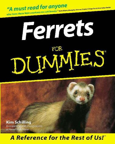 Ferrets For Dummies by Kim Schilling