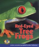 Red-Eyed Tree Frogs