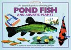 An Essential Guide To Choosing Your Pond Fish And Aquatic Plants