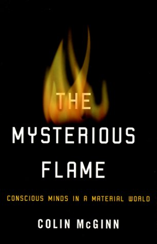 The Mysterious Flame by Colin McGinn