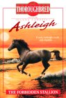 The Forbidden Stallion (Thoroughbred: Ashleigh, #5)