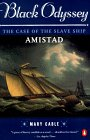 Black Odyssey: The Case of the Slave Ship `Amistad'