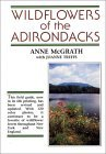 Wildflowers of the Adirondacks by Anne McGrath