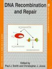 Dna Recombination And Repair