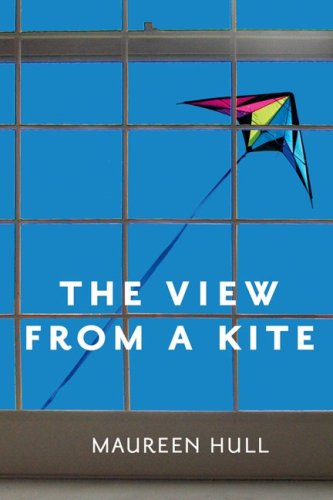 View from a Kite by Maureen Hull