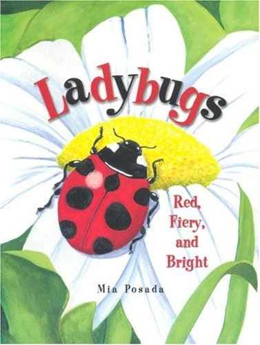 Ladybugs by Mia Posada