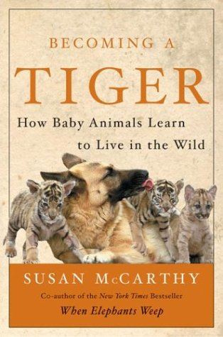 Becoming a Tiger by Susan McCarthy