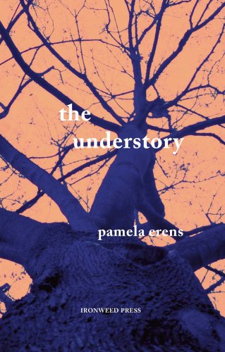 Understory by Pamela Erens