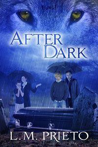 After Dark by Luisa Prieto