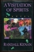 A Visitation of Spirits (Hardcover)