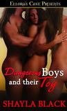 Dangerous Boys and Their Toy by Shayla Black