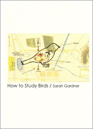 How to Study Birds by Sarah Gardner