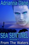 Sea Sentinel, Ep. 1: From the Waters