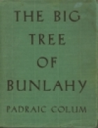 cover Big Tree of Bunlahy: stories of my own countryside