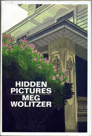 Hidden Pictures by Meg Wolitzer