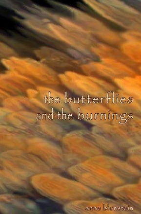 the butterflies and the burnings by Anne Blonstein