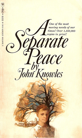 literary analysis essay for a separate peace