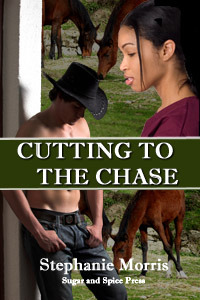 Cutting To The Chase by Stephanie Morris