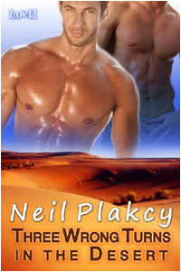 Three Wrong Turns in the Desert by Neil S. Plakcy