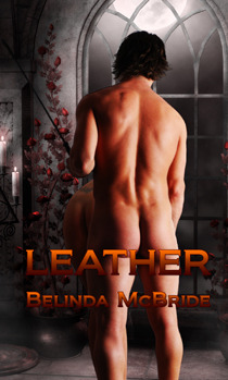 Leather by Belinda McBride
