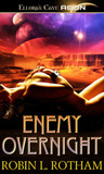 Enemy Overnight (Aliens Overnight, #2)