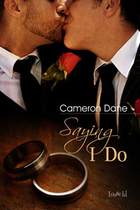 Saying I Do by Cameron Dane