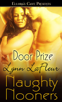 Door Prize by Lynn LaFleur