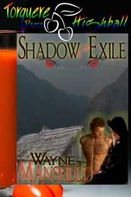 Shadow of the Exile by Wayne Mansfield