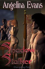 Shadow Stalker by Angelina Evans