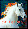 The Last Lipizzan